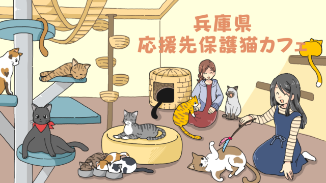 兵庫県の応援先保護猫カフェ・保護犬カフェ