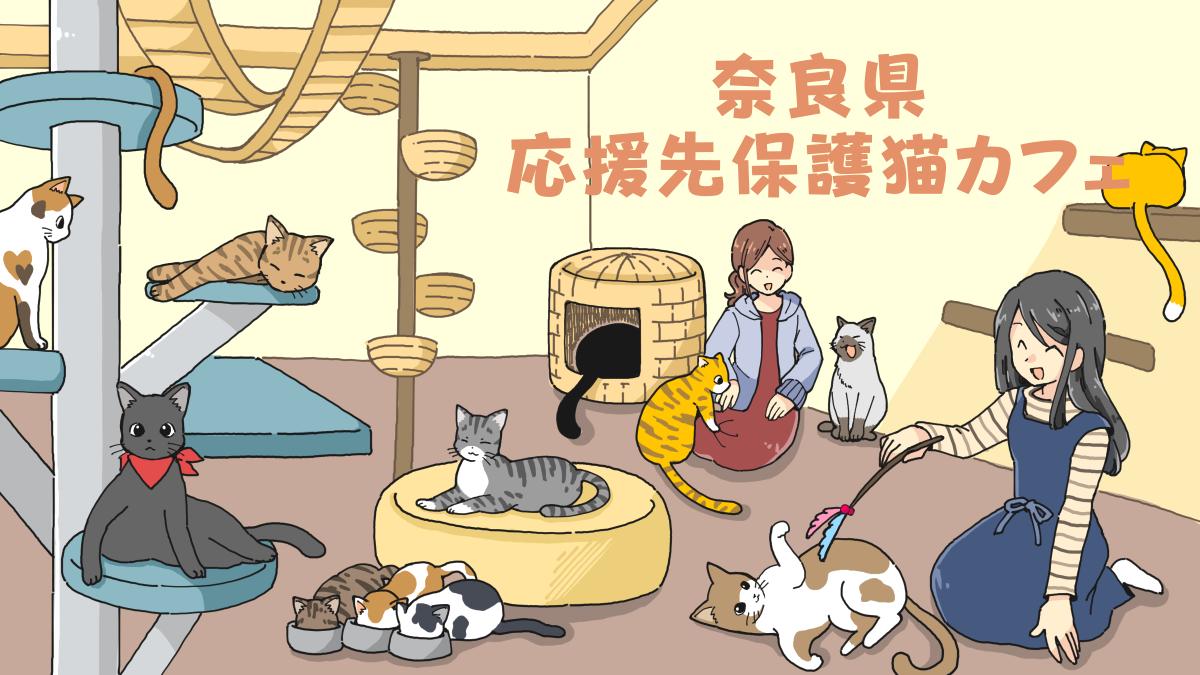 奈良県の応援先保護猫カフェ・保護犬カフェ