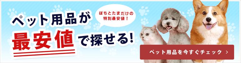 新型コロナウイルスの営業自粛でピンチ!保護猫カフェを応援しよう!応援特設ページはこちら