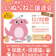 県主催 犬猫の譲渡会