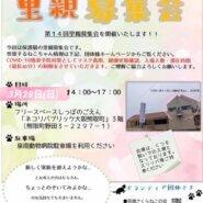 保護猫の里親募集会in泉南郡熊取町ネコリパ