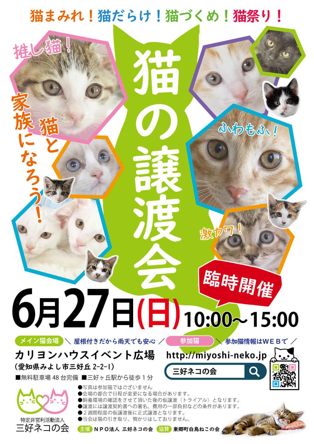 子猫いっぱい24匹の譲渡会/愛知県みよし市