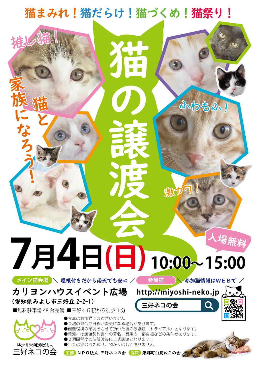 子猫20匹まつり/愛知県みよし市