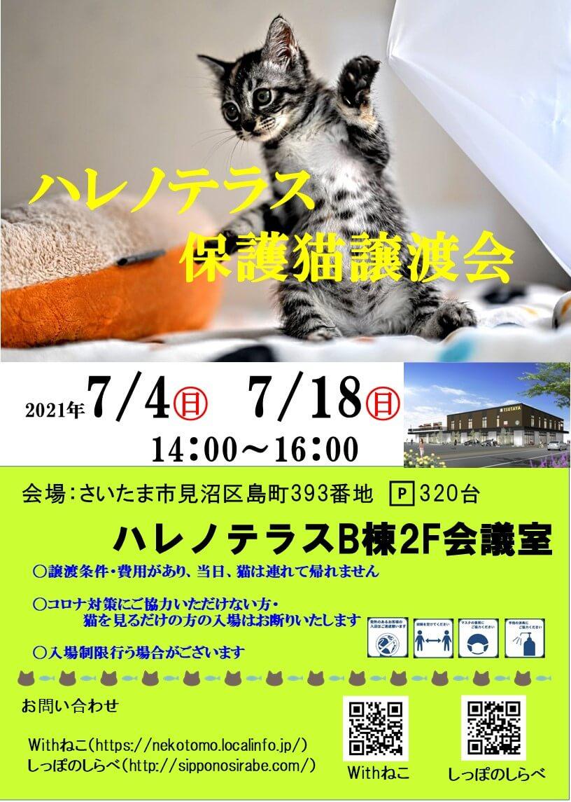 7/4(日)ハレノテラス保護猫譲渡会