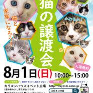 子猫まみれ!子猫祭り第5弾/愛知県みよし市