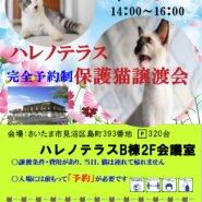 【完全予約制】9/5(日)ハレノテラス保護猫譲渡会