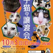 ★子猫20匹以上参加!/愛知県みよし市★