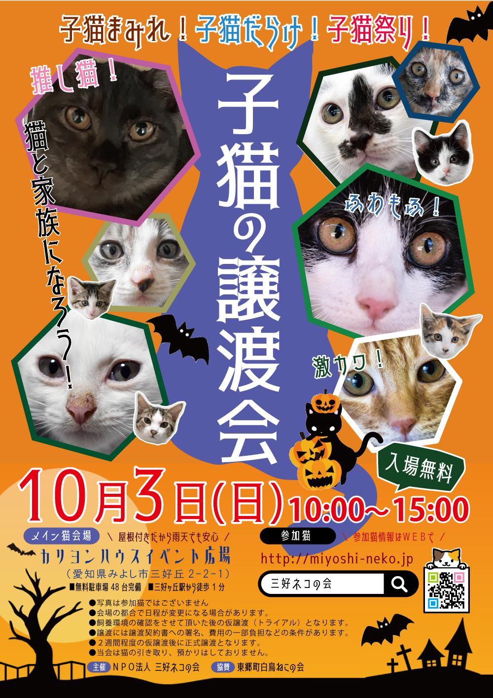 ★子猫24匹!/愛知県みよし市★